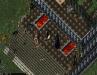 tammy_chessy_screenshot_001