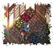 FlowersOutside-2